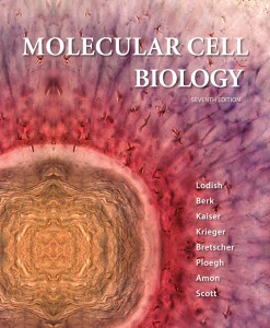 Molecular Cell Biology Lodish 7th Edition Test Bank