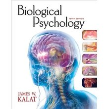 Biological Psychology Kalat 10th Edition Test Bank
