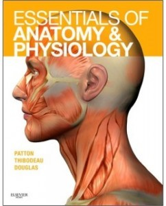 Test Bank for Essentials of Anatomy and Physiology, 1st Edition: Kevin T. Patton