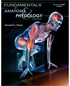Test Bank for Fundamentals of Anatomy and Physiology, 3rd Edition: Donald C. Rizzo
