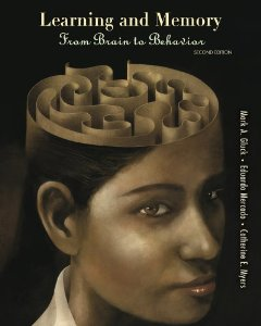 Test Bank for Learning and Memory From Brain to Behahior 2nd Edition Gluck