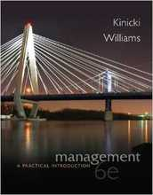 Management A Practical Introduction Kinicki 6th Edition Solutions Manual