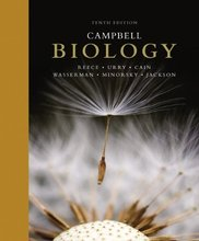 Campbell Biology Reece 10th Edition Test Bank
