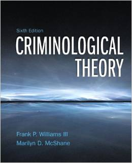 Test Bank for Criminological Theory 6th Edition Franklin P Williams III Download