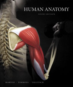 Test Bank for Human Anatomy, 6th Edition: Martini