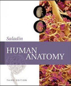 Test Bank for Human Anatomy, 3rd Edition: Saladin