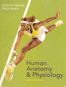 Test Bank For Human Anatomy And Physiology, 7 Revised ed of US ed edition: Elaine Nicpon Marieb
