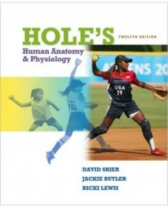 Test Bank for Hole's Human Anatomy & Physiology, 12th Edition: David Shier