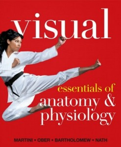 Instructors Manual Visual Essentials of Anatomy and Physiology 1st Edition Martini