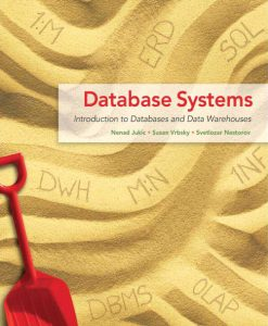 Test Bank for Database Systems – Introduction to Databases and Data Warehouses Nenad Jukic