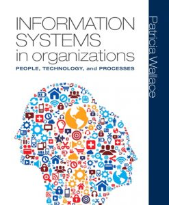 Test Bank for Information Systems in Organizations: People, Technology, and Processes Patricia Wallace