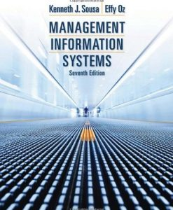 Management Information Systems Sousa 7th Edition Solutions Manual