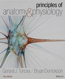 Test Bank for Principles of Anatomy and Physiology 14th Edition Gerard J Tortora Download