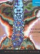 Test Bank for Human Anatomy, 5th Edition : Marieb