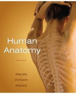 Test Bank for Human Anatomy, 6th Edition: Elaine N. Marieb