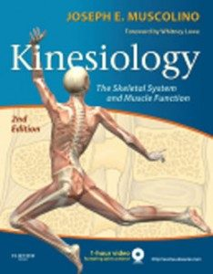 Test Bank for Kinesiology The Skeletal System and Muscle Function, 2nd Edition: Muscolino