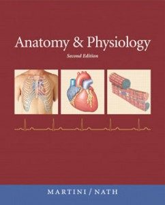Test Bank for Anatomy and Physiology, 2nd Edition: Martini