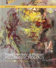 Test Bank for Fundamentals of Human Neuropsychology Seventh Edition