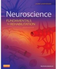 Test Bank for Neuroscience: Fundamentals of Rehabilitation, 4th Edition: Laurie Lundy-Ekman