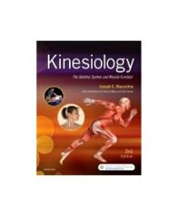 Test Bank for Kinesiology 3rd Edition by Muscolino