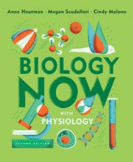 Test Bank for Biology Now with Physiology, 2nd Edition, by Anne Houtman, Megan Scudellari, Cindy Malone, ISBN: 9780393663587, ISBN: 9780393631791